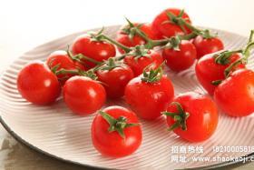 烧烤蔬菜:烤茄子