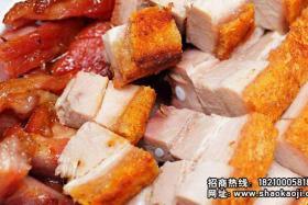 电热烧烤炉制作广东烧烤之---美味新宠