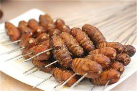 烤串谁都吃过,外皮酥脆、内里鲜嫩的烤蚕蛹你吃过吗?
