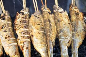 烤孜然华子鱼的做法_烤孜然华子鱼