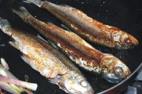 家常红烧华子鱼的做法_红烧华子鱼怎么做
