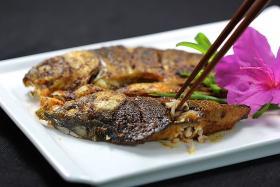 丰茂烧烤自动旋转炉辣烤梭鱼非常好吃